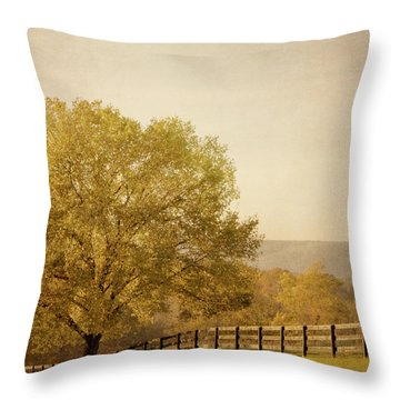 Autumn Wonders Throw Pillow by Kim Hojnacki