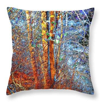 Autumn Woods Throw Pillow by Ann Powell