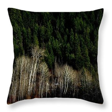 Throw Pillow featuring the photograph Autumn Woods by Michael Dohnalek