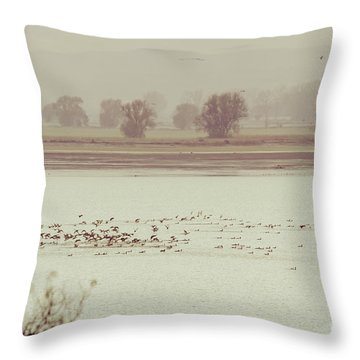 Autumnal Dreamland Iv Throw Pillow