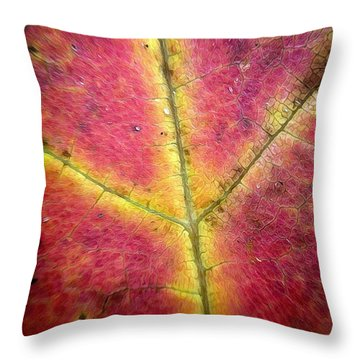 Autumnal Intricacy Throw Pillow by Natasha Marco
