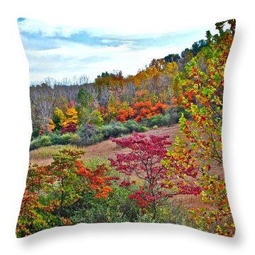 Autumnal Vista Throw Pillow by Frozen in Time Fine Art Photography
