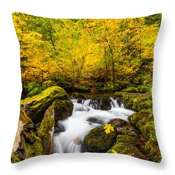 Autumn's Beginnings Throw Pillow by Patricia Davidson