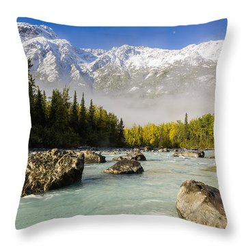 Autumns Colors Contrast With Winters Throw Pillow