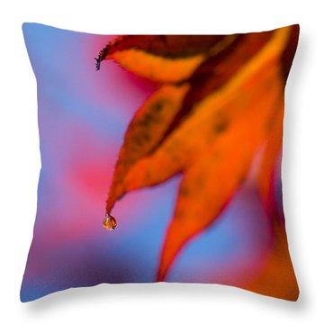 Autumn's Finest Throw Pillow by Anne Gilbert