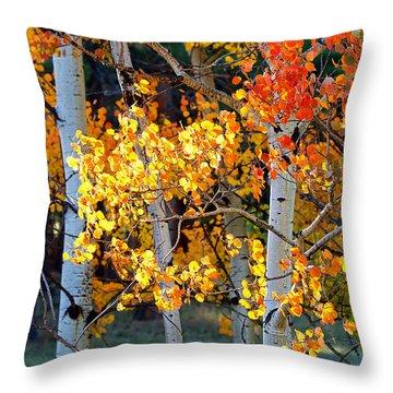 Autumn's Fire Throw Pillow by Jim Garrison