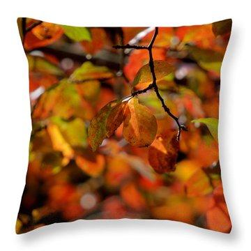 Autumn's Firey Show Throw Pillow