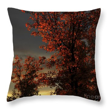 Autumn's First Light Throw Pillow