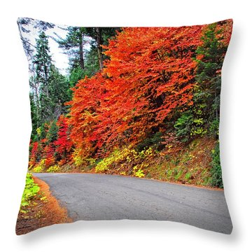 Throw Pillow featuring the photograph Autumn's Glory by Lynn Bauer
