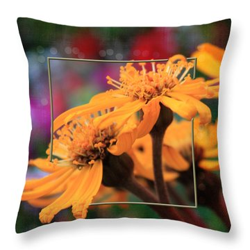 Throw Pillow featuring the photograph Autumn's Glory by Sandra Foster