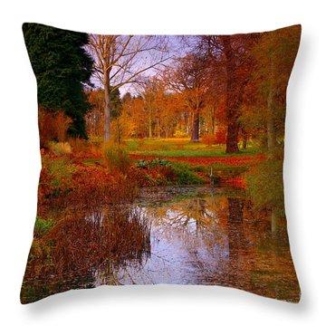 Autumn's Golden Colours Throw Pillow