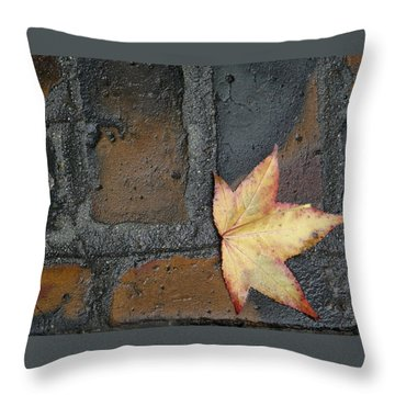 Autumn's Leaf Throw Pillow by Sherry Dee Flaker