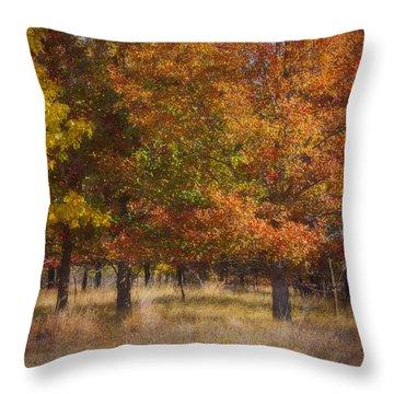 Autumn's Miracle Throw Pillow