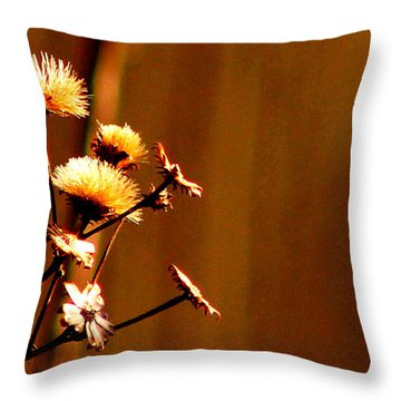 Throw Pillow featuring the photograph Autumn's Moment by Bruce Patrick Smith