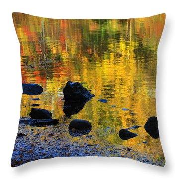 Autumns Rainbow Throw Pillow by Karol Livote