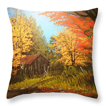 Autumns Rustic Road Throw Pillow by Wendy Shoults
