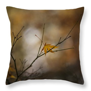 Autumns Solitude Throw Pillow by Mike Reid