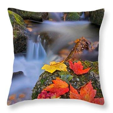 Autumn's Song Throw Pillow