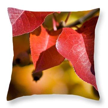 Autumn's Three Graces Throw Pillow