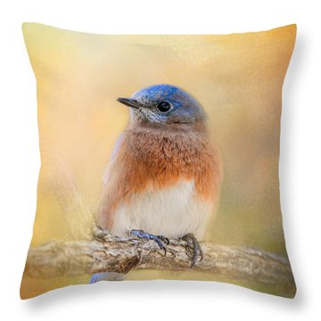 Autumn's Treasure Throw Pillow