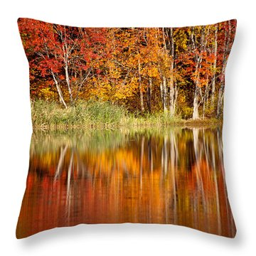 Autumns True Colors Throw Pillow by Karol Livote
