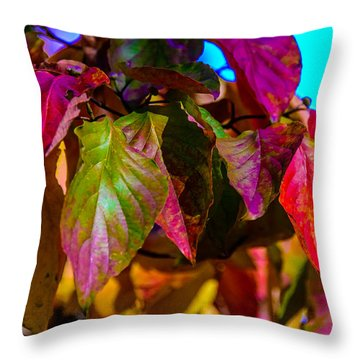 Autumns Wake Up Call Throw Pillow