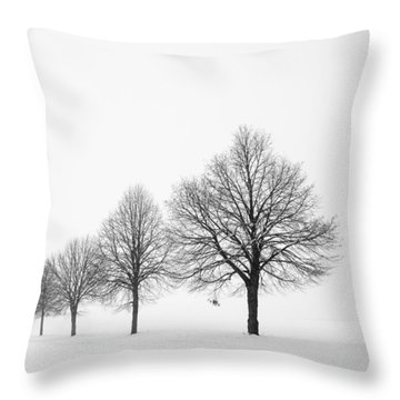 Avenue With Row Of Trees In Winter Throw Pillow