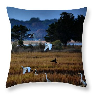 Aviary Convention Throw Pillow