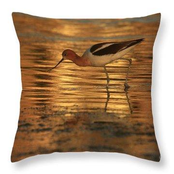 Avocet Gold Throw Pillow
