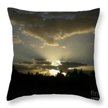 Awakening Throw Pillow by Bev Conover
