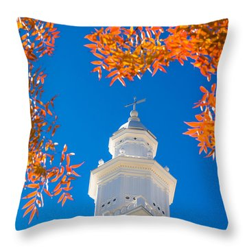 Awakening Throw Pillow by Chad Dutson