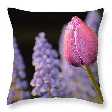 Awakening Throw Pillow by Lisa Knechtel