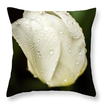 Awakening Throw Pillow by Sara Frank