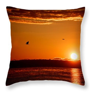 Awakening Sun Throw Pillow