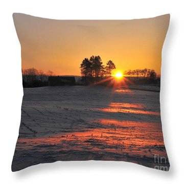 Throw Pillow featuring the photograph Awakening by Terri Gostola