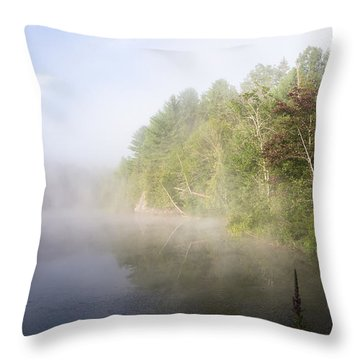 Awaking Throw Pillow by Jola Martysz