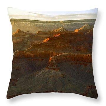 Awash With Light Throw Pillow