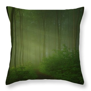 Forest Trail Throw Pillows