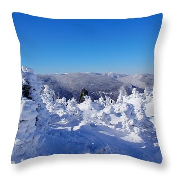Awe Throw Pillow