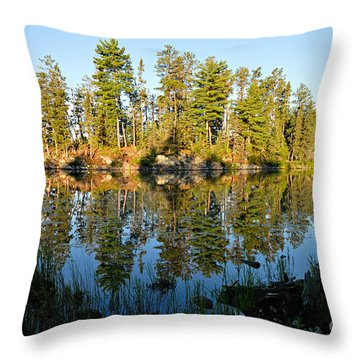 Awesub Morning Throw Pillow by Larry Ricker