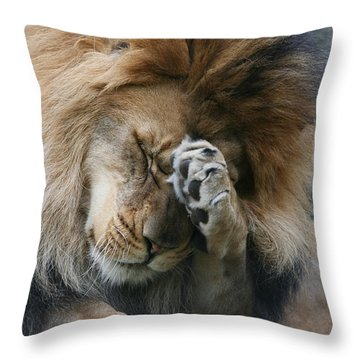 Awwwww..... Throw Pillow