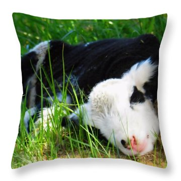 Awwwww Throw Pillow