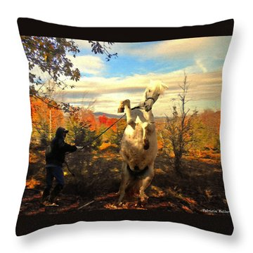 Ay Caramba Throw Pillow by Patricia Keller
