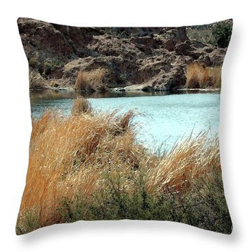 Ayer Lake Throw Pillow by Kathleen Struckle