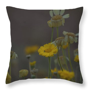 Throw Pillow featuring the photograph Az Flowers by Rod Wiens