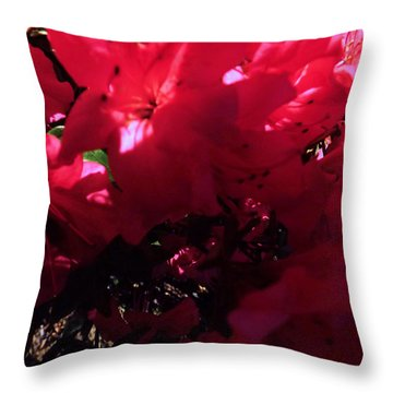 Throw Pillow featuring the photograph Azalea Abstract by Robyn King