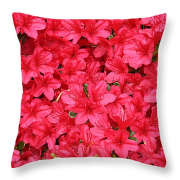 Azalea In Bloom Throw Pillow