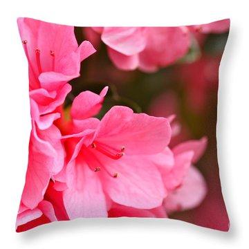 Azalea Veil Study 1 Throw Pillow