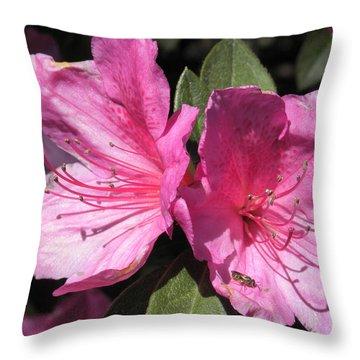Azaleas Bee Throw Pillow
