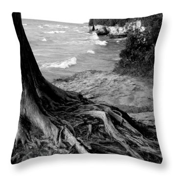 B And W Cedar Roots At Cave Point Throw Pillow